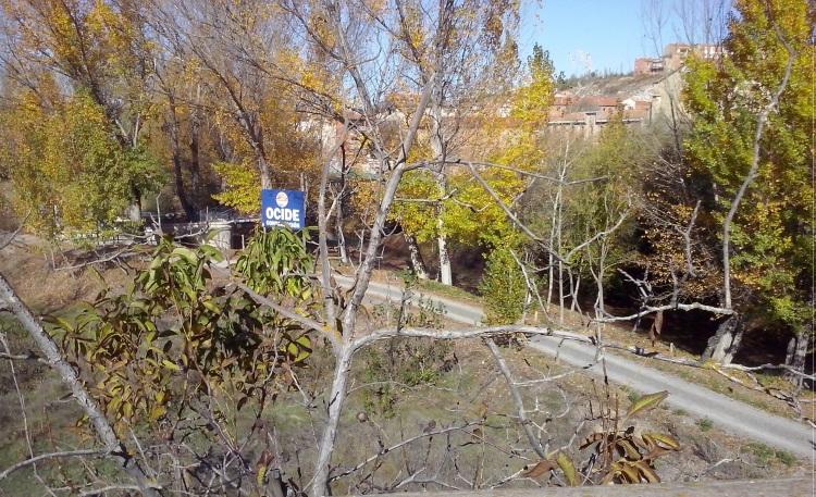 El otoño en el parque fluvial 3