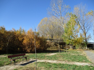 Parque frente a La Moratilla. Algunos árboles están secos por falta de mantenimiento