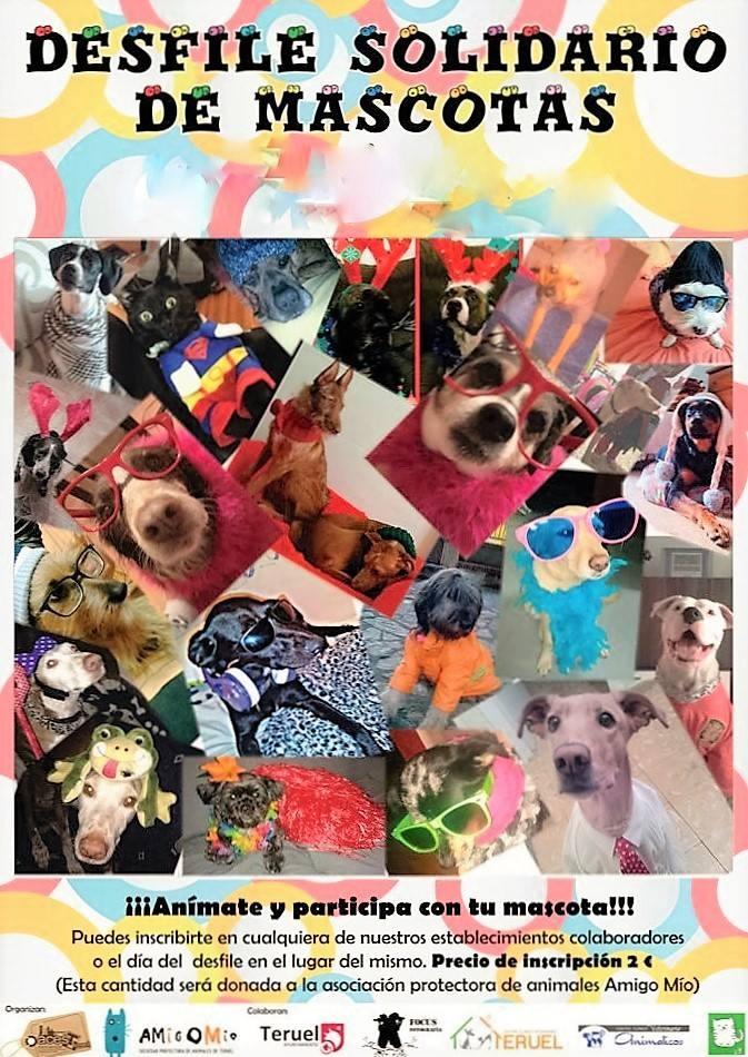 Desfile solidario mascotas