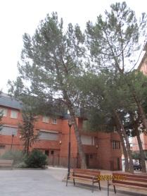 parque-calle-aldo-rosi3