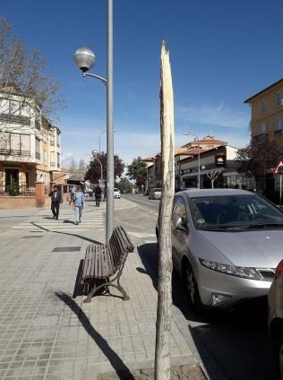 Avda. de Sagunto casi llegando a la intersección de la calle San Vicente de Paúl