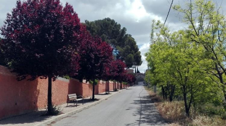 camino2bcementerio